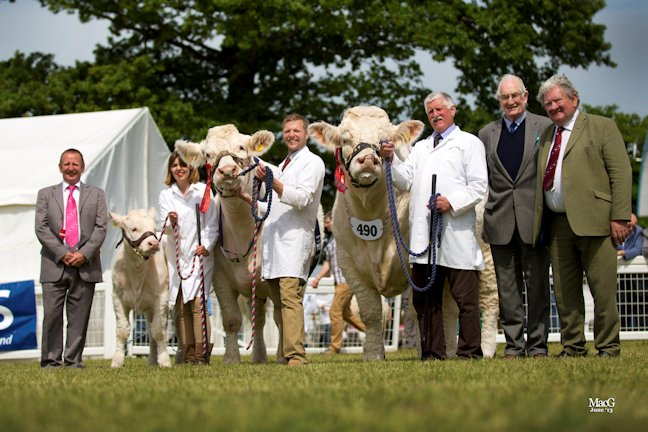 From left to right, the judge Steve Nesbitt, Carolyne Milne with Elgin Iona, her husband Matthew with Elgin Catherine (supreme champion charolais) Jim Muirhead with Maerdy Grenadier (charolais male champion and reserve champion) David Walter and BCCS President Gilbert Crawford