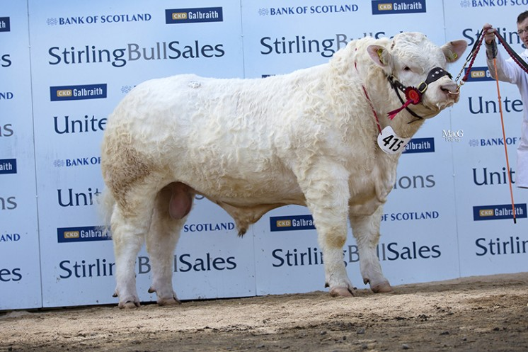 Harestone Ingot at 11,000gns