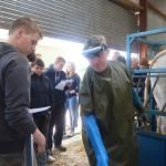 Vet Gareth Bell scanning a cow for pregnancy