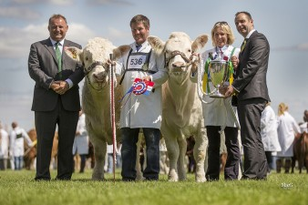Well done to the Charolais pair of Marwood Journal and Holtstead Jocelyn on winning the Blythwood inter breed pairs competition at the Great Yorkshire Show