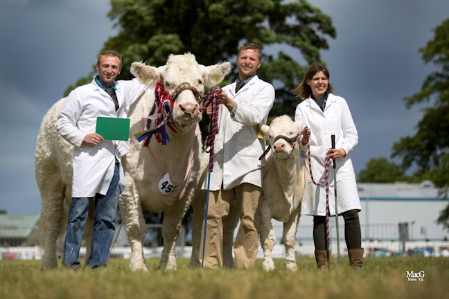 Sam, Matthew and Carolyne Milne celebrate a tremendous inter breed championship won by Elgin Catherine