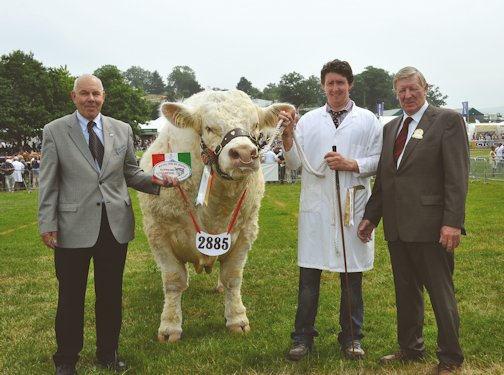 The BCCS President Ralph Needham and the judge Peter Donger congratulated Nairn Wyllie on winning the supreme charolais championship