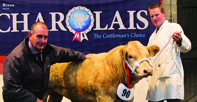 Class winner male calf class owned by Clive Hoey with Geoffrey Farlow Bothwells Farm Supplies sponsor