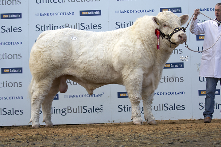 Dunesk Hero the first prize winner sold for 11,000gns