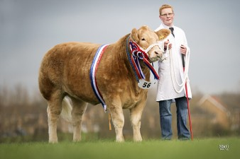 Drew Hyslop with Bang Tidy the East of England Smithfield Festival Supreme Champion