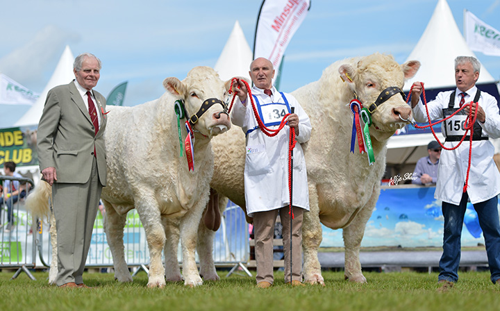 Mr Billy Robson OBE, judge with the Interbreed Pairs Coolnaslee Helga and Rumsden Fawkes