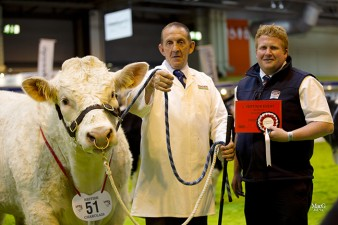 Gareth Scott from Cogent sponsored a bull class won by Danny Wyllie and Newroddige Imp