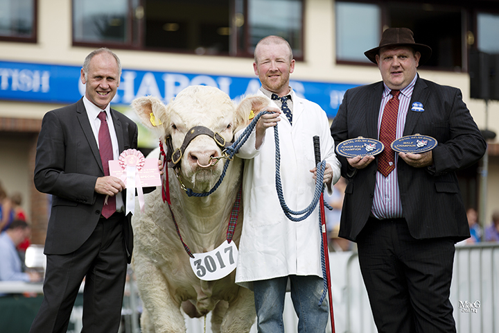 Peter Howells with the male champion Gwenog Icarus, flanked by Ifor Jones and William McAllister