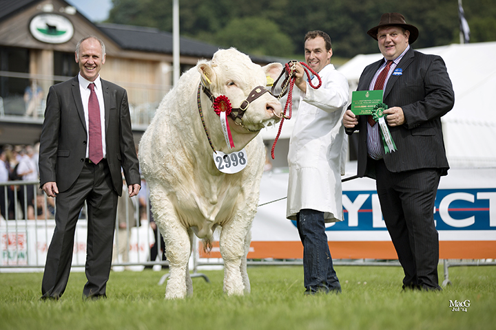 Chris Williams with the reserve male champion Montgomery Ianto exhibited by Roberts & Jones