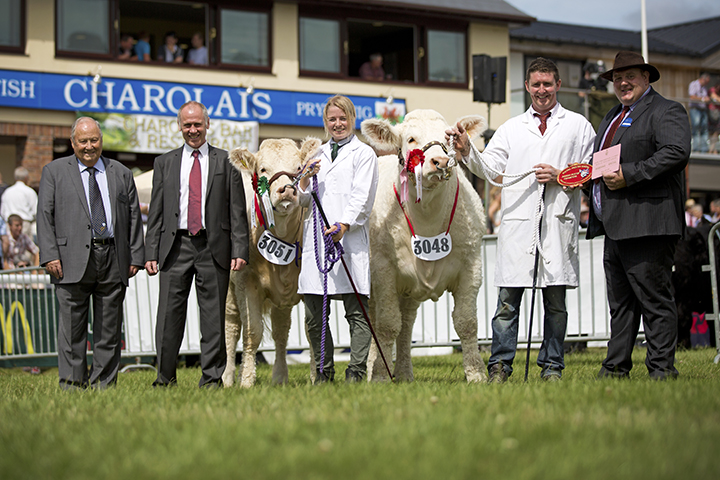 The junior female champion l to r Mervyn Parker, Ifor Jones, Eve Corbett with Teme Iris (reserve heifer champion) Nairn Wyllie and the champion heifer Sportsmans Infanta and William McAllister