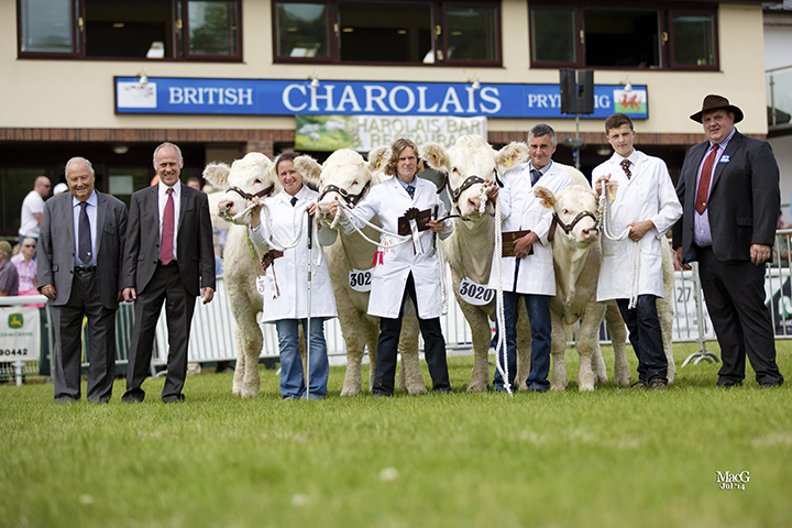 Mr & Mrs Andrew White's Balbithan team won the best group of three Charolais owned and bred by exhibitor
