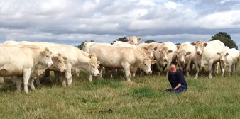 Johnathan Watson with the Tweeddale Herd