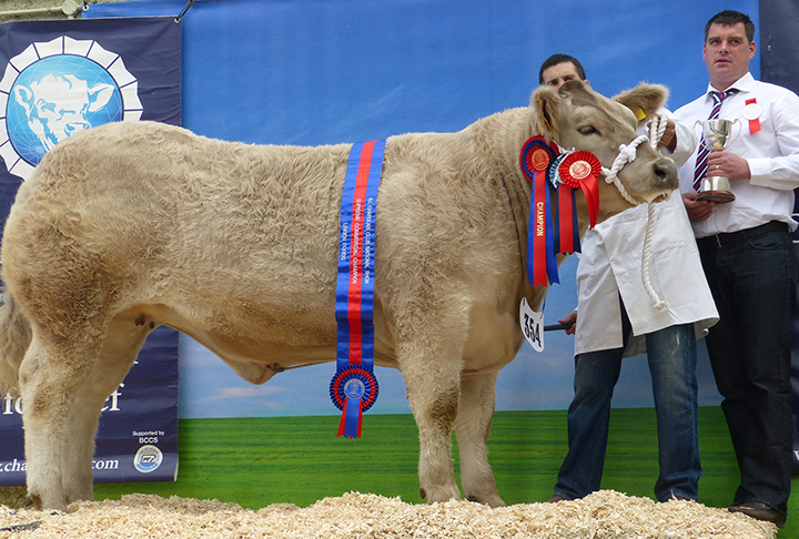 The Supreme Commercial Champion owned by Mr A Veitch with Mr P Fay of Linden Foods Ltd