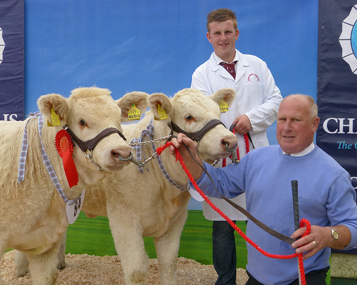 Alan Burleigh and Harold Stubbs with their winning pair of Charolais