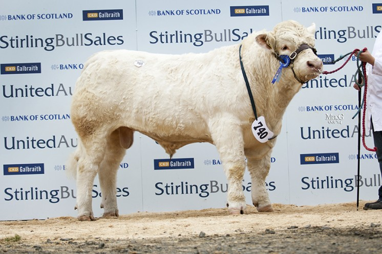 Balmyle Inevitable at 10,000gns