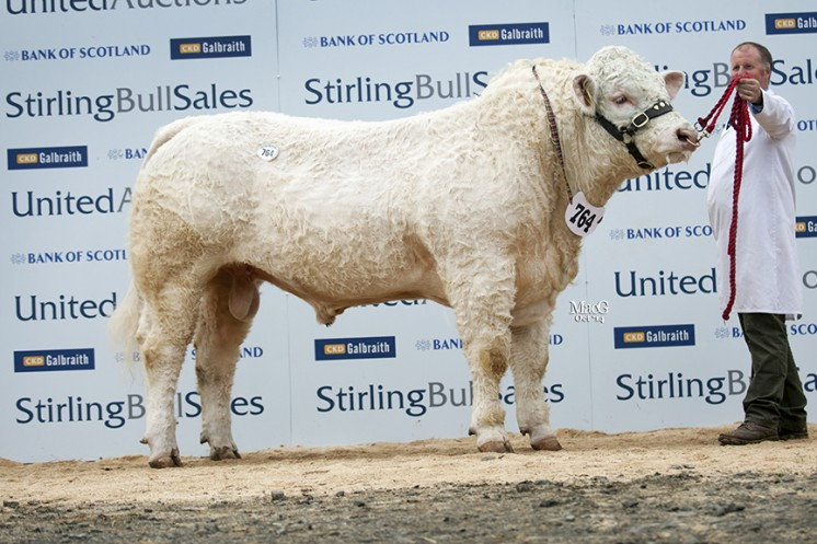 Swalesmoor Imperial at 8,000gns