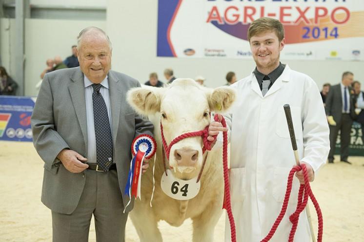 1st Prize Steer
