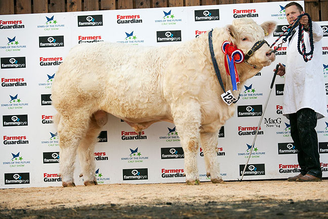 Elgin Isaac - Senior Continental & Breed Champion