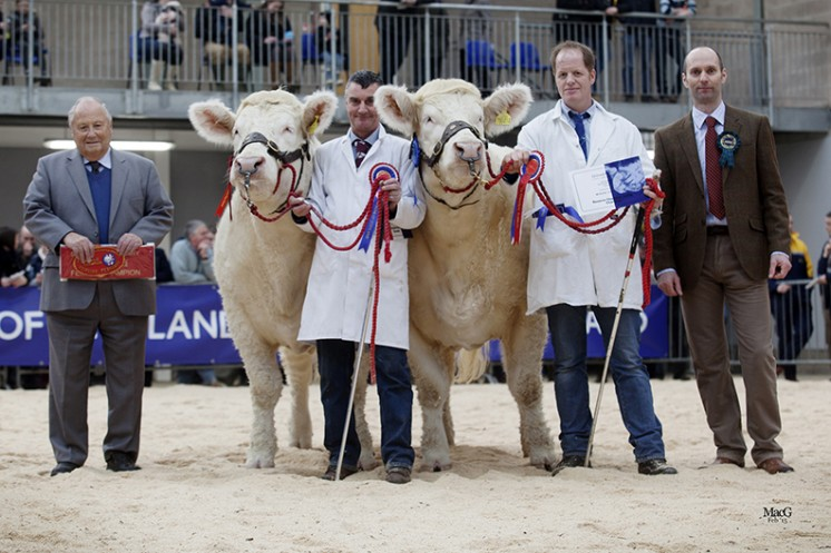 The Female Champion. Left to right: Mervyn Parker, Roy Crockatt with the female champion Goldies Happy, Bruce Goldie with the reserve female champion Goldies Havanna and Michael Massie