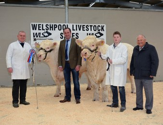 The judge David Bothwell and the BCCS President Mervyn Parker congratulated Llyr Jones (right) with the champion bull Graiggoch Iceman and Arwel Owen with the reserve supreme champion bull Trefaldwyn Imense