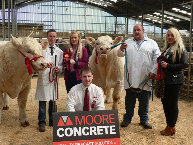 Show champion Derrygiff Jester shown by Adiran Johnston, judge Caoimhe McGovern, Burnside Inspire ET reserve champion with Williams McAllister judge Eimear McGovern. front Jeff Haslett Moore Concrete Show Sponsor
