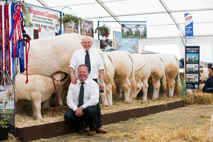 Albert & David Connolly taking a well earned break at Balmoral show