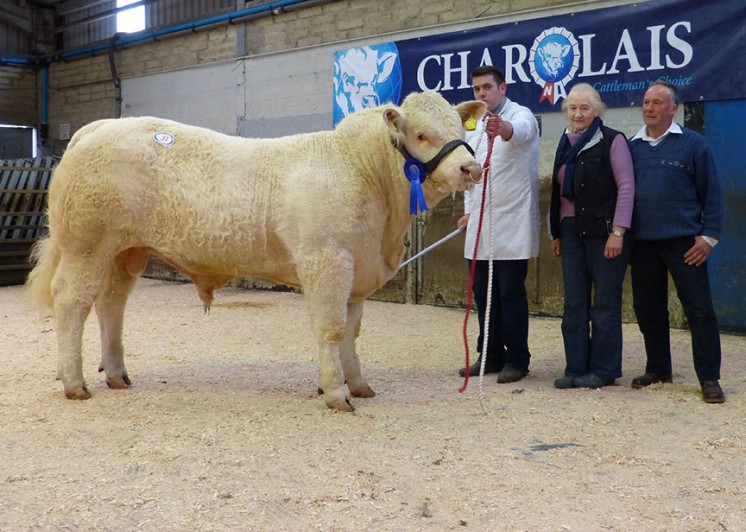 Cappagh James 3,500gns