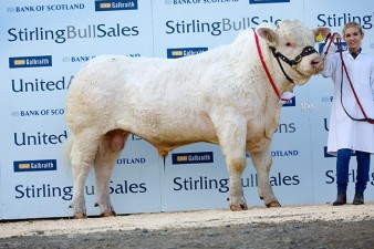 Harestone Impress 5,500gns