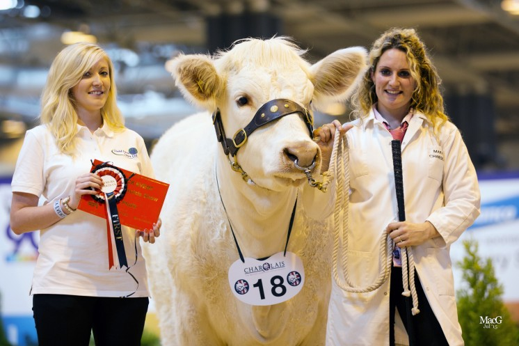 Class 4 – Frankie Baines from Field Farm Tours congratulated Michelle Hanson on her success with Marne Jojo