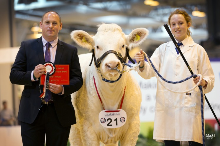 Class 5 – Kivells auctioneer Mark Davies presented Roma Wyllie with a red ticket on winning a class with Newroddige Jody