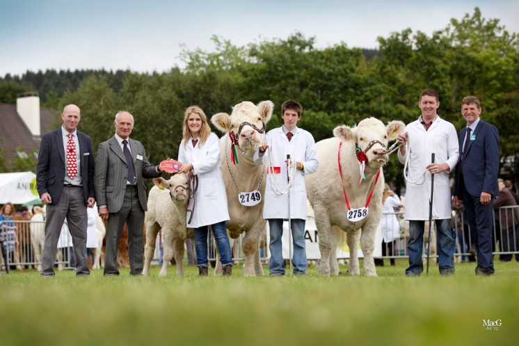 THE FEMALE CHAMPIONS Gretnahouse Fannabel is joined by the reserve champion Sportsmans Infanta shown by Nairn Wyllie.  On the left is the Animax sponsor Iwan Davies