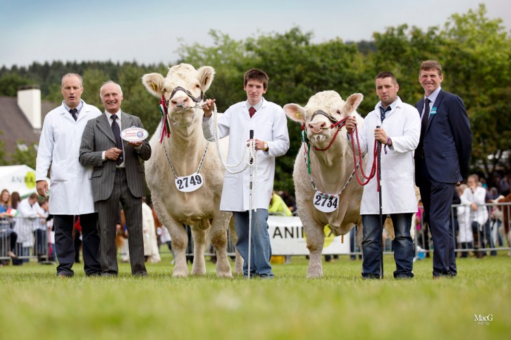 THE CHAMPIONS L to r: Kevin Thomas, BCCS President Cyril Millar, Jim Wale with the champion Charolais Gretnahouse Fannabel, Medwyn Williams with the male champion and reserve supreme champion Castellmawr Jacpot and the judge Cyril Millar