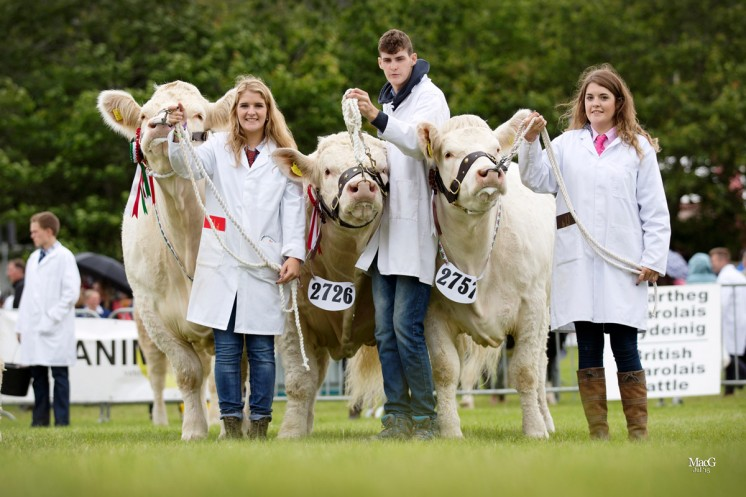 The MOELFRE team owned by Kevin Thomas won the prize for the best group of three