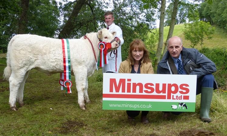 Minsups Junior Heifer Champion DERRYHARNEY LULU,MR H.C STUBBS & A.A BURLEIGH