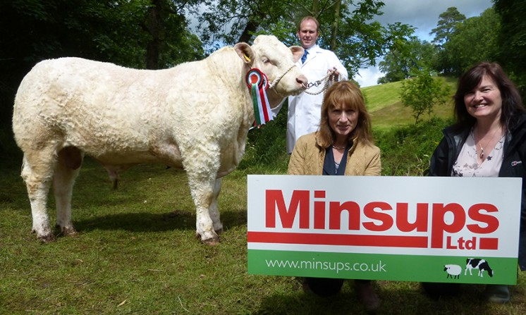 Minsups Reserve Senior Male ChampionCORNASCRIEBE JOEY, MR & MRS J.A WATSON & SON