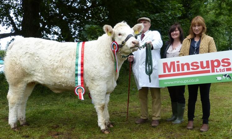 Minsups Senior Heifer Champion DEELEVIEW JO, MR G J CRAWFORD