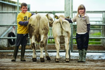 Ciaran and Chloe MacIntyre were winners of the Kinross Show Young Handlers Competition with calves from the Greig Farms unit