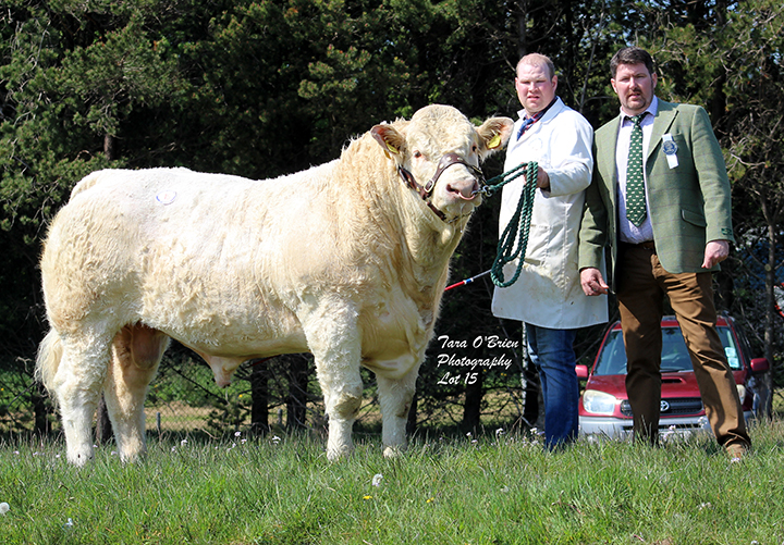 Coolnaslee Largolf - 4,900gns