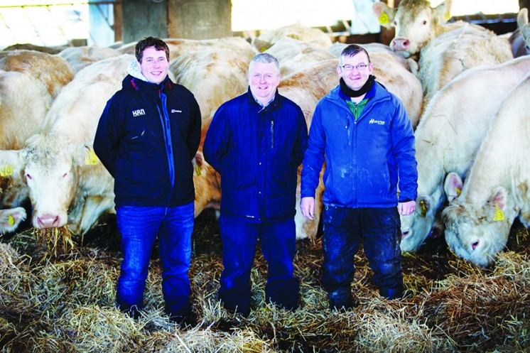 Stuart and Neil Barclay with stockman, Sean O'Brien