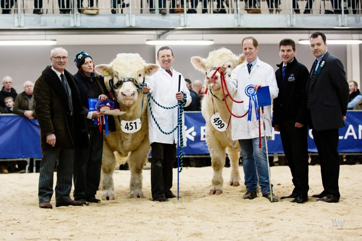 The Intermediate Champions From left to right: Cyril Millar, Sheena Gatherer, Tom Gatherer with Barnsford Jubilant, Hamish Goldie with the reserve intermediate champion Goldies Jasper, David Murray and Ben Harman
