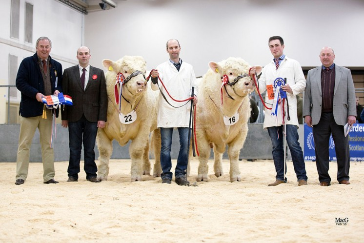 David Benson with Judge Lee Coghill, Mike Massie and Champion Justice, Alex Stephen with Reserve Jagger and Steward Roy Milne