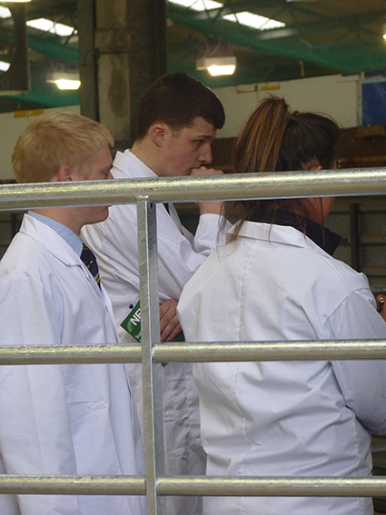 Pic 3 - Donald Stockjudging
