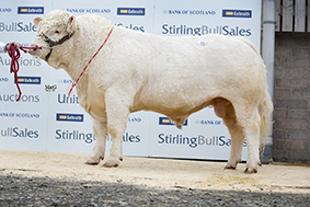 Bleasdale Justice 5,200gns