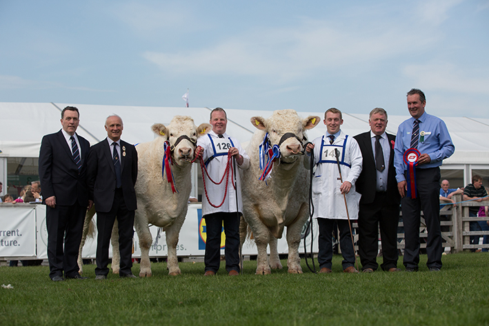 Sponsors ABP with Cyril Millar, Reserve Supreme Champion Brigadoon Jemma, Supreme Champion Stranagone Jones & Judge Brian McAllister