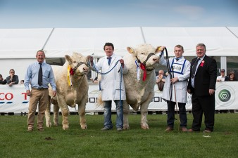 Steven Nesbitt with Reserve Male Champion Aghinure Les, Male Champion Stranagone Jones & Judge Brian McAllister