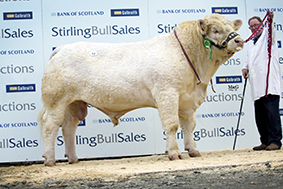 Top price Balthayock Jetset 9,000gns