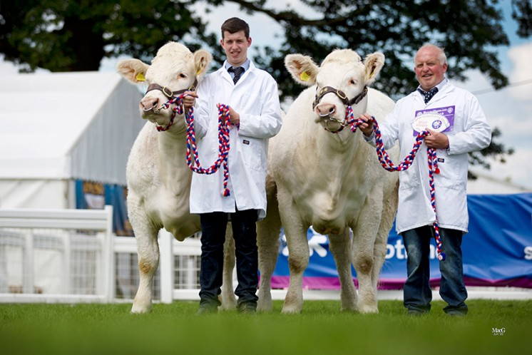 The winner of the best pair of Charolais cattle owned and bred by exhibitor were the Balthayock pair of Balthayock Jemima and Balthayock Jade