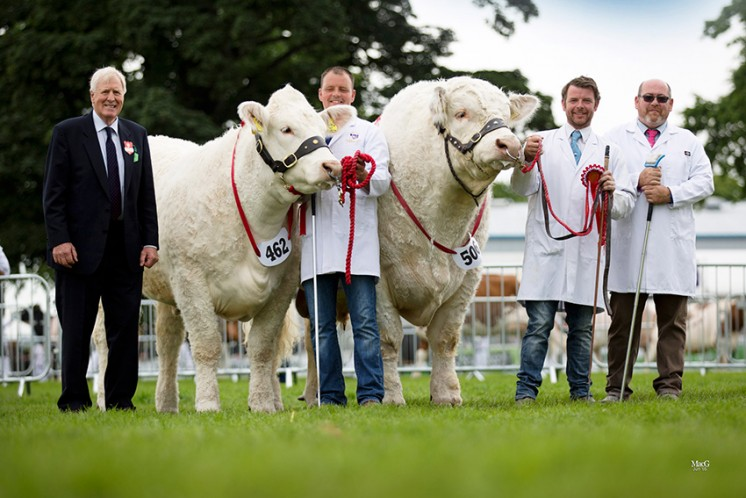 The Charolais team of Wissington Jocasta and Kilbline Instigator won the inter-breed pairs competition. Pictured with the judge Jim Goldie