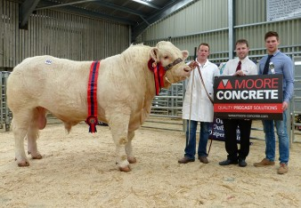 Clive Hoey and Champion Rawbrook Judge 2,200gns