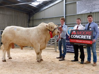 Jack Smith and Bessiebell Lego 2,350gns